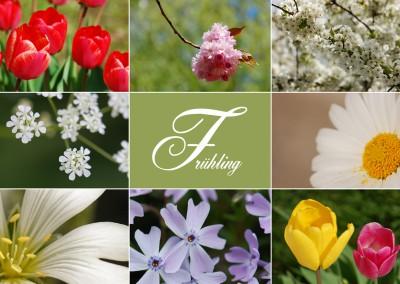 Collage Frühling